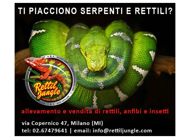 Rettil Jungle Milano