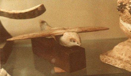 L'aliante di Saqqara, una foto ravvicinata