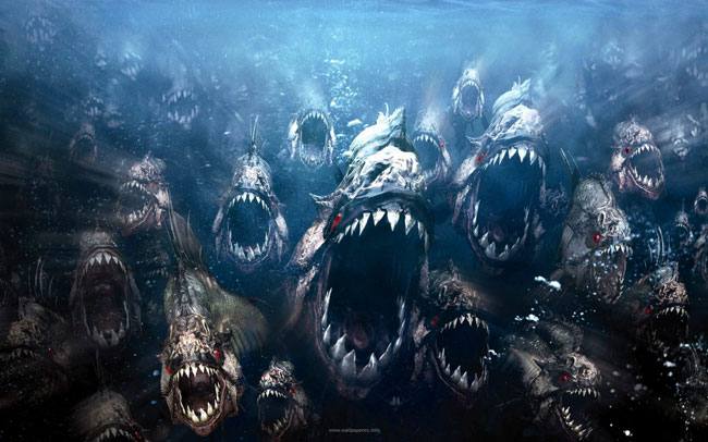 Un branco di pesci piranha all'attacco
