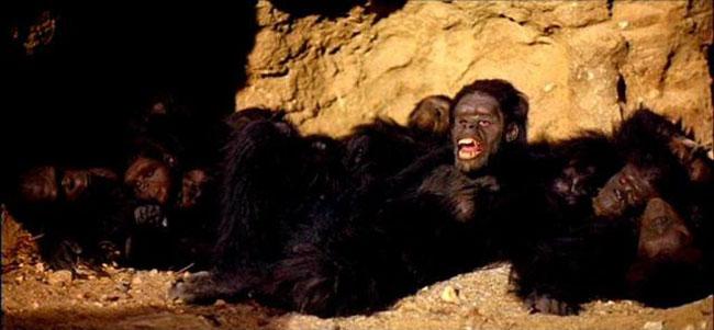 2001: Odissea nello Spazio, le scimmie si svegliano