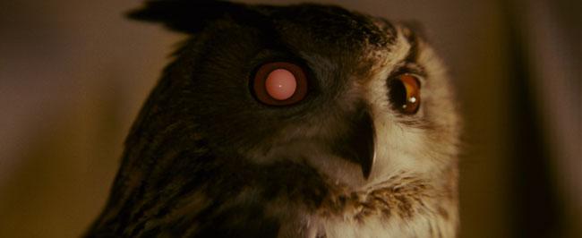 La civetta nel film Blade Runner
