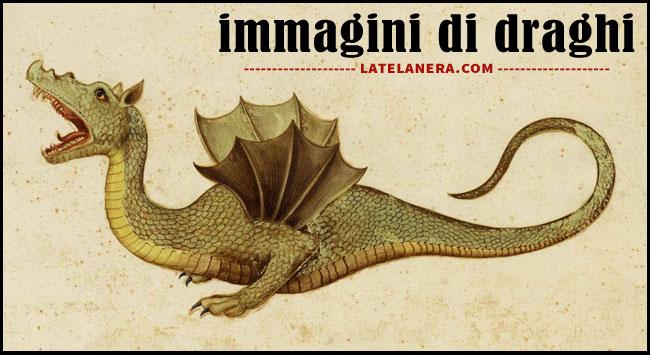 Disegni, immagini e foto di draghi e dragoni