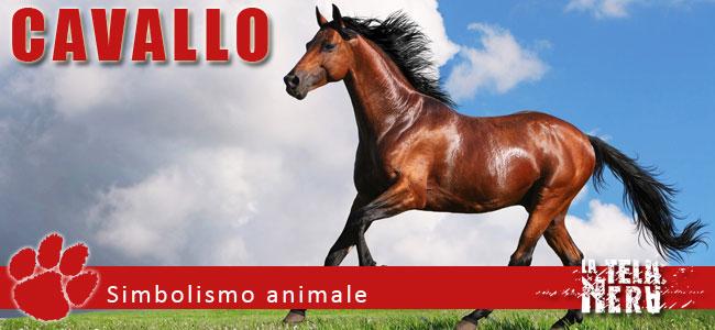 Simboli animali: il significato del Cavallo