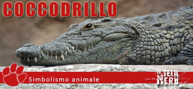 Simboli animali: il significato del Coccodrillo