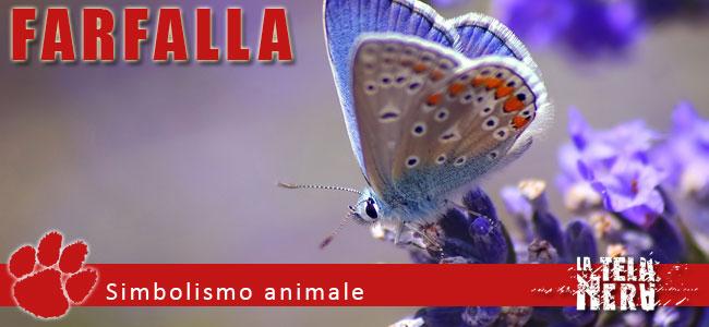 Simboli, significati e interpretazioni della farfalla