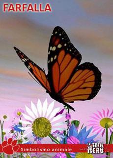 I significati dell'insetto Farfalla