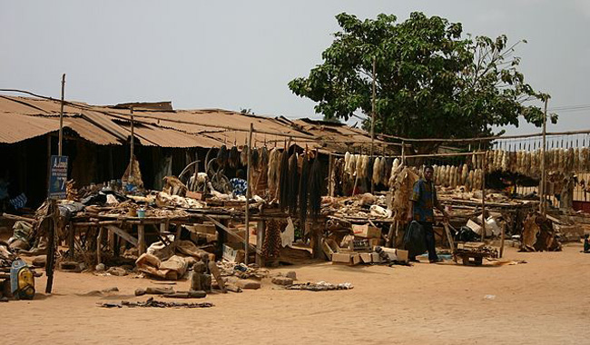 Akodessewa il mercato dei feticci voodoo a Lomè