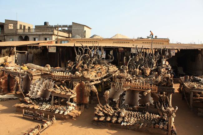 viaggi da brivido voodoo akodessawa