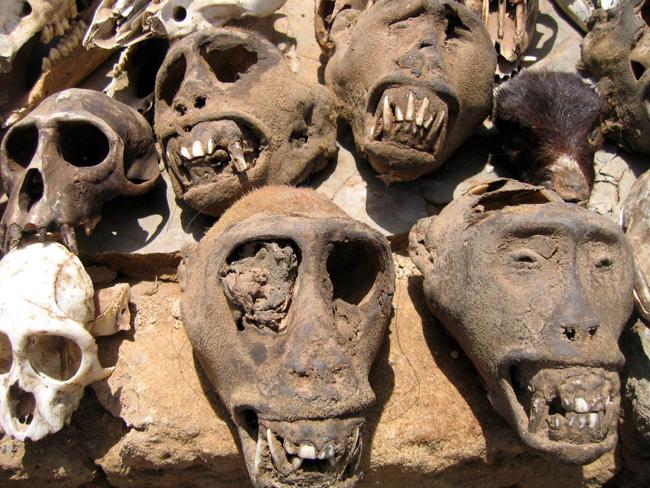 Feticci voodoo in vendita al mercato Akodessewa