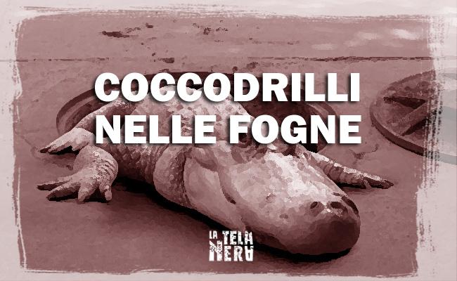 La leggenda metropolitana dei coccodrilli nelle fogne