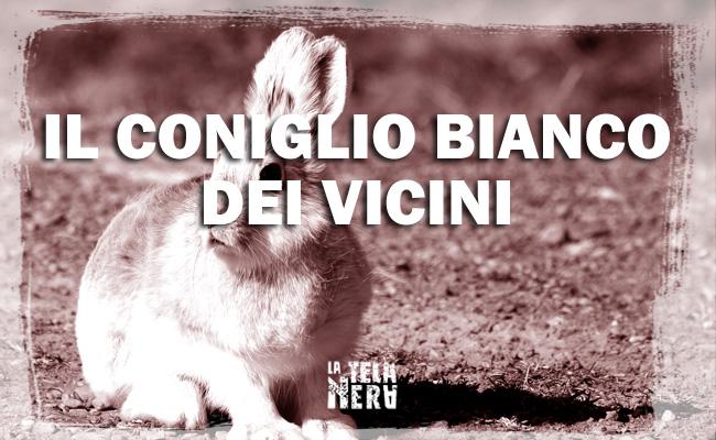 La leggenda metropolitana del coniglio bianco dei vicini