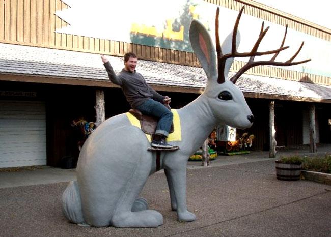 Il jackalope è anche un'attrazione turistica in alcune città americane
