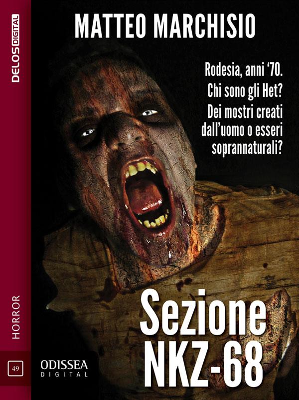 La copertina di Sezione NKZ-68 di Matteo Marchisio
